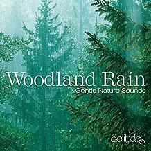Woodland Rain