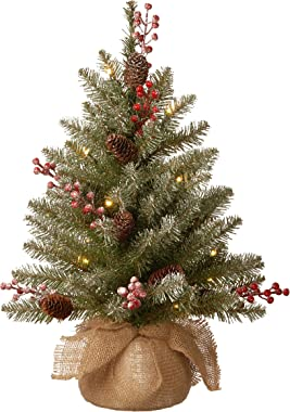 National Tree Company Pre-lit Artificial Mini Christmas Tree | Includes Small LED Lights, Red Berries, Pine Cones and Cloth B