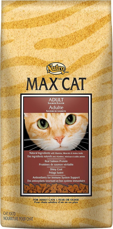 Nutro Senior Dry Cat Food, Salmon, 3 lb
