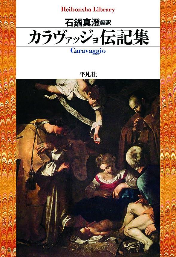 出来事十代の若者たち改善するカラヴァッジョ伝記集 (平凡社ライブラリー838)