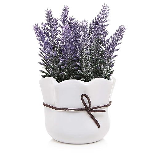 Lavender Decor Amazon Com