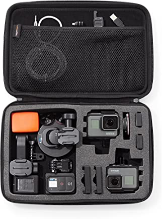 AmazonBasics Large Carrying Case for GoPro And Accessories - 13 x 9 x 2.5 Inches, Black