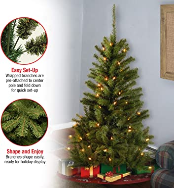 National Tree Company Pre-lit Artificial Mini Christmas Tree   Includes Pre-strung White Lights and Stand   Canadian Fir Gran