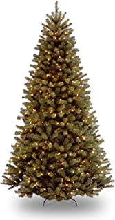 National Tree 7.5 Foot North Valley Spruce Tree with 550 Clear Lights, Hinged (NRV7-300-75)