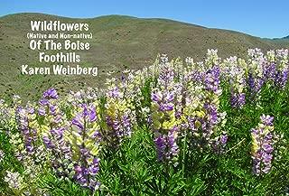 Best wild flowers boise Reviews