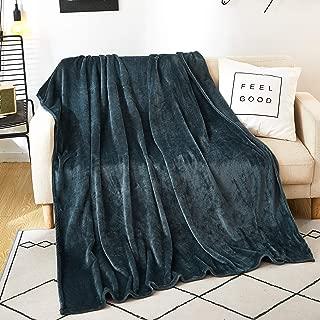 SAIWER Fleece Blanket Throw Size Lightweight Super Soft Cozy Luxury Bed Blanket Microfiber for Bed Sofa AC Room Beach Picnic Fall Spring Winter Use (Dark Grey, Throw (50