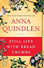 Still Life with Bread Crumbs: A Novel