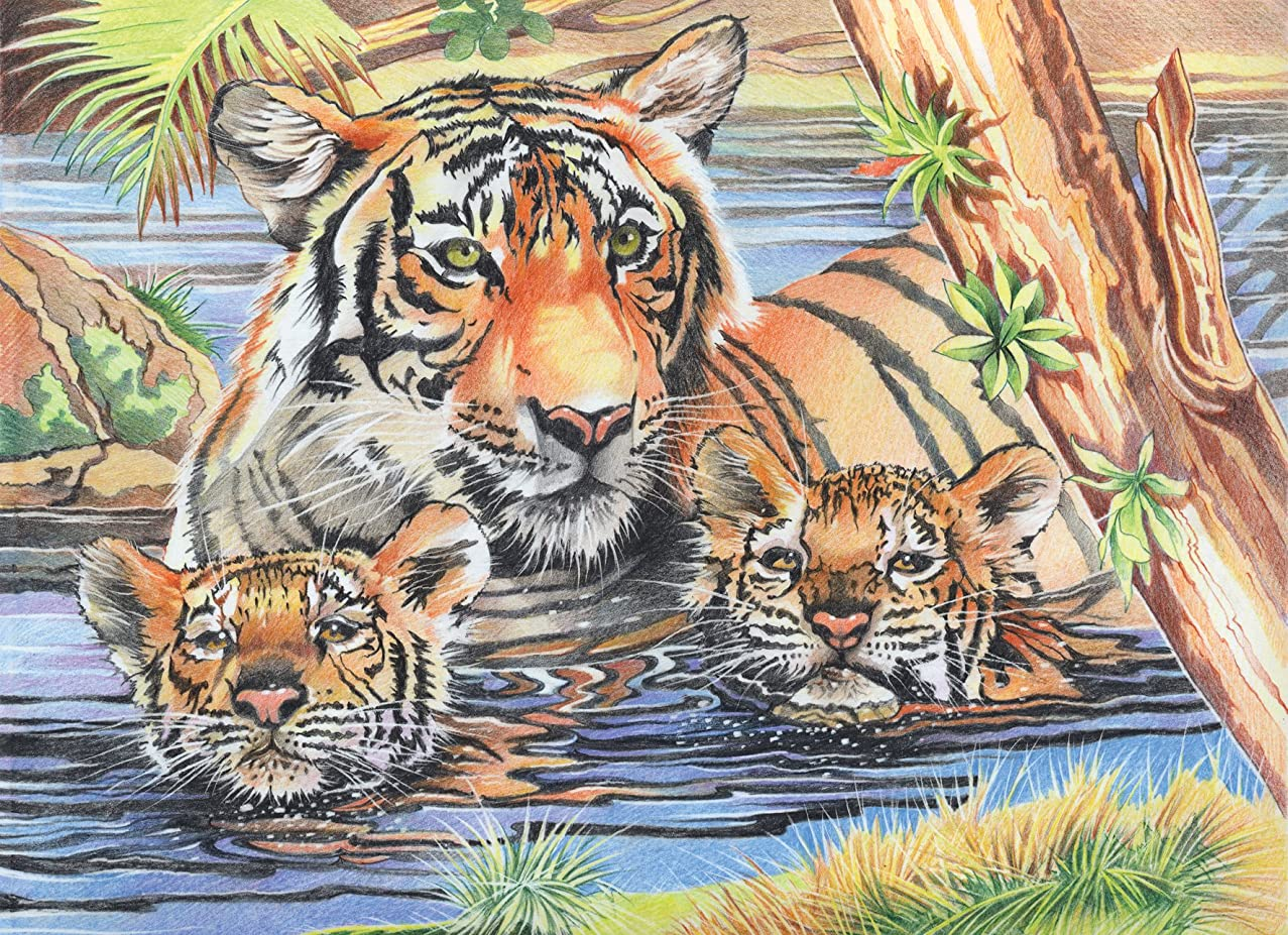 Reeves PPCR1 Tiger and Cubs Colored Pencil by Numbers, Large