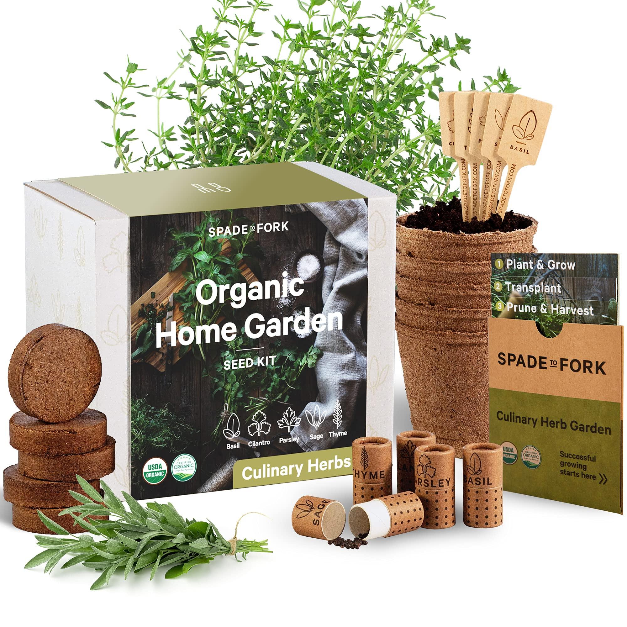 Indoor Herb Garden Starter Kit - Certified USDA Organic Non GMO - 5 Herb Seed Basil, Cilantro, Parsley, Sage, Thyme, Potting Soil, Peat Pots - DIY Kitchen Grow Kit for Growing Herb Seeds Indoors