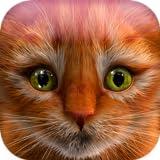 Meu gatinho (simulador de gato)
