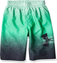 Under Armour Boys' Fashion Swim Trunk