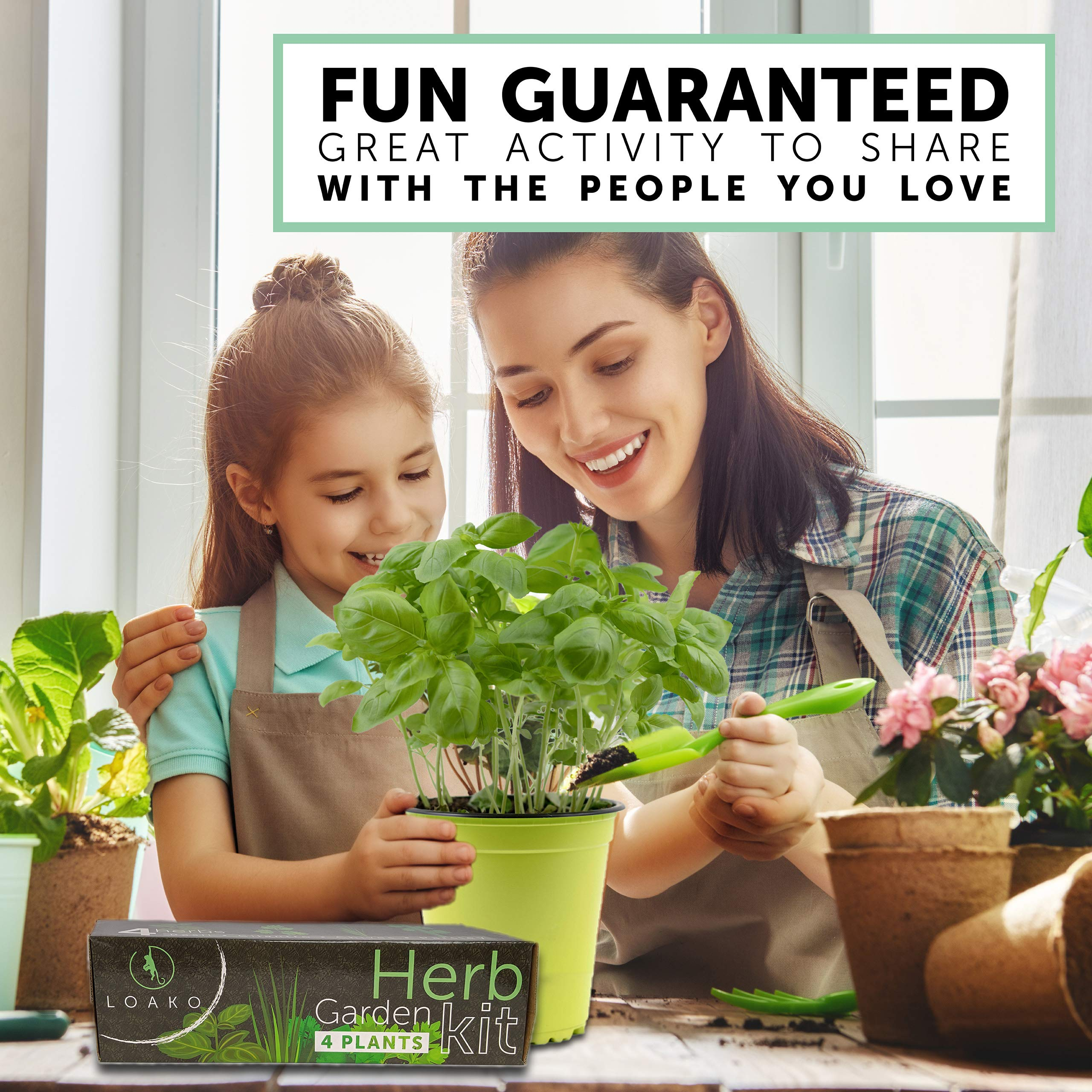 Indoor Herb Garden Starter Kit - 4 Herb Seeds Growing Kit with Bamboo Planting Pots & Potting Soil - Non-GMO Gardening Kit - DIY Home Seed Starter Grow Plant Kit - Basil, Parsley, Cilantro, Chives