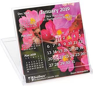 2019 Mini Desk Calendar - Flower and Plant Photography with Holidays - in Compact, Stand-Up Floppy-Disk 4x4 Jewel Case