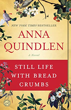 Still Life with Bread Crumbs: A Novel (English Edition)