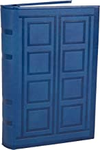 dr who diary