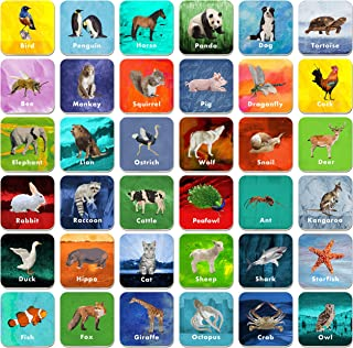 Best card game with animals Reviews