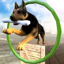 Dog Stunts & Simulator 3D - Crazy Dog Games
