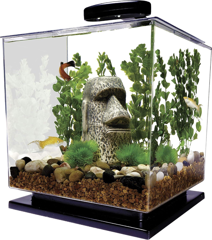 DLCS-EN093 Aquarium Stage 1st Edition x3 Near Mint Common