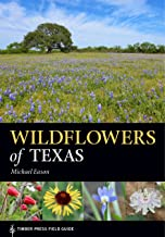 texas native wildflowers guide