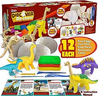 کیت های JOYIN Klever Dino Egg Dig و Clay با 12 کیت حفاری فسیل دایناسور ، 12 کیت سفالی ، 12 مینی فیگور دایناسور ، کارتها و ابزارهای جمعی ، کیت های صنایع دستی علوم کودکان باستان شناسی یادگیری بنیادی