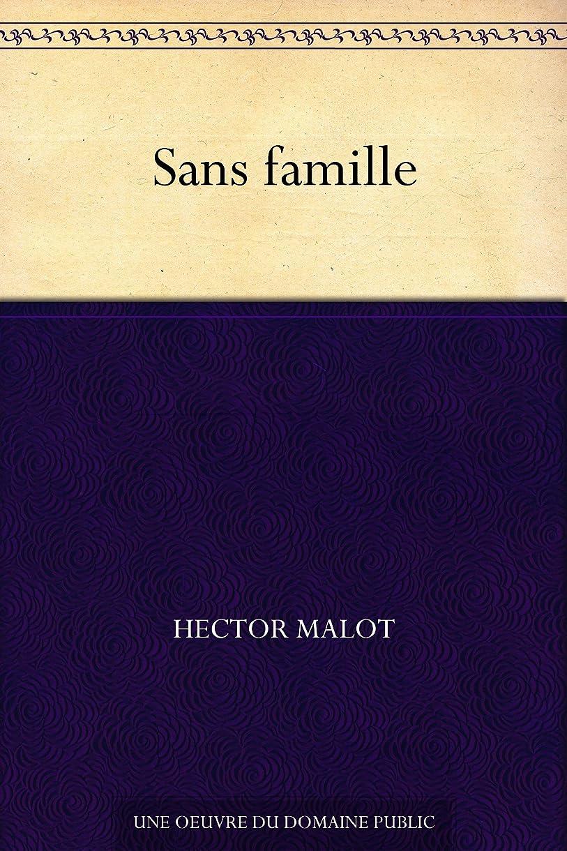 パターンますますペチュランスSans famille (French Edition)