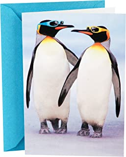 Hallmark Shoebox Funny Anniversary Card (Penguins)