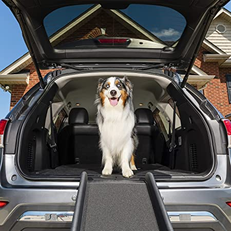 PetSafe Happy Ride Folding Pet Ramp, 62 Inch, Portable Lightweight Dog and Cat Ramp, Great for Cars, Trucks and SUVs - Side Rails and High Traction Surface