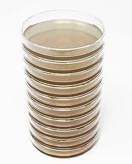 Best malt extract agar plates Reviews