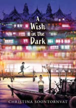 A Wish in the Dark PDF