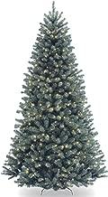 colorado blue spruce christmas tree sale