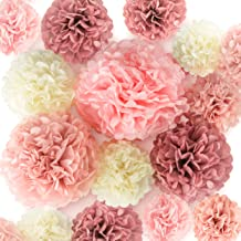 EpiqueOne 20 Pieces Blush Pink, Dusty Rose, Mauve, Cream Tissue Paper Pom Poms - Ceiling and Party Decorations - Backdrop Flowers