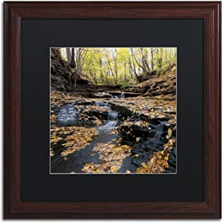 Lakeview Autumn Falls in Black Matte and Wood Frame Artwork by Kurt Shaffer, 16 by 16-Inch