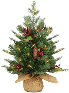 National Tree 2 Foot Feel Real Nordic Spruce Tree with Cones, Red Berries and 50 Battery Operated Warm White LED Lights with Timer in Burlap Base (PENS1-355-20-B1)