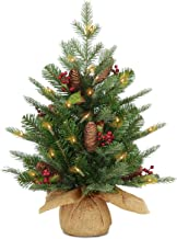 National Tree Company Pre-lit Artificial Mini Christmas Tree | Includes Small Lights, Cones, Red Berries and Cloth Bag Bas...