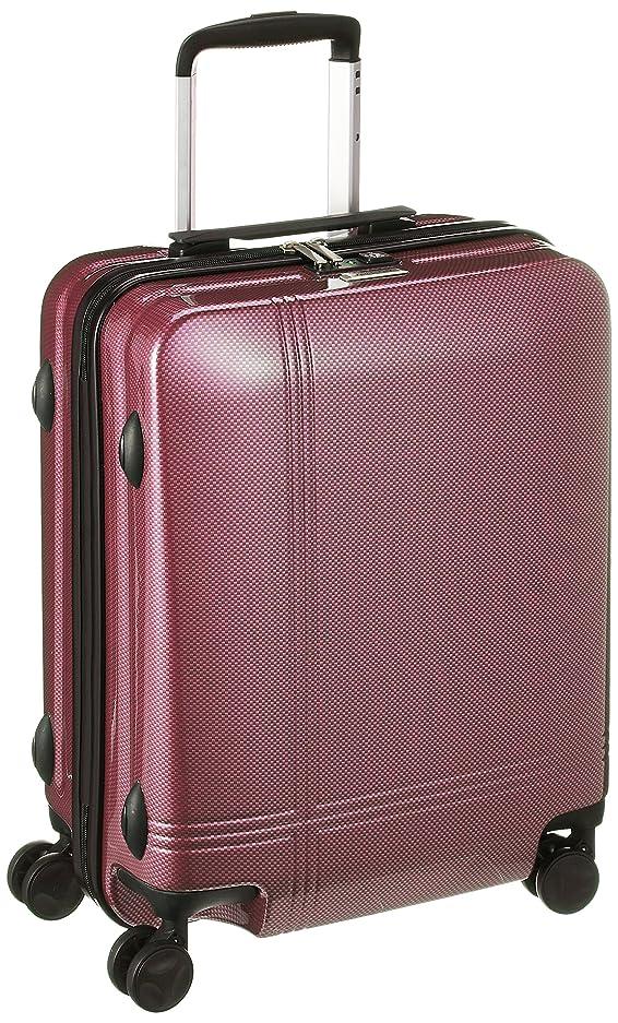 拮抗する不規則なスケッチ[アバロン] スーツケース ACE製 双輪キャスター TSAロック 35L 51 cm 2.8kg