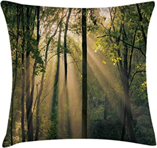 Ambesonne Forest Throw Pillow Cushion Cover, Morning Sunrays Through Trees Summertime Countryside Scenic View, Decorative Square Accent Pillow Case, 18