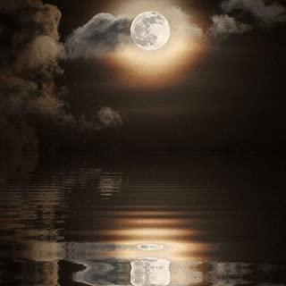 Full Moon Reflecting Water Live Wallpaper