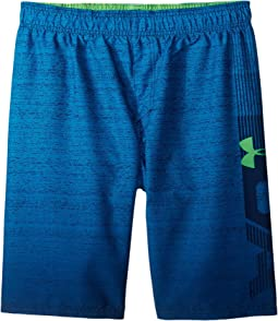 Under Armour Kids - UA Dipper Volley Shorts (Big Kids)