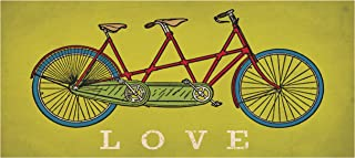 one bicycle built for two