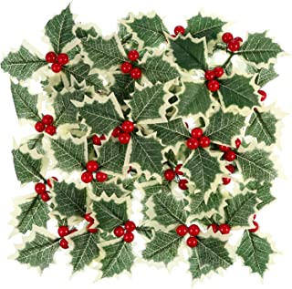 Best christmas leaves decorations Reviews