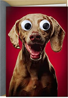 Hallmark Shoebox Funny Anniversary Card or Love Card (Googly Eye Dog)
