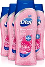 Dial Body Wash, Himalayan Salt, 21 Ounce (Pack of 4)