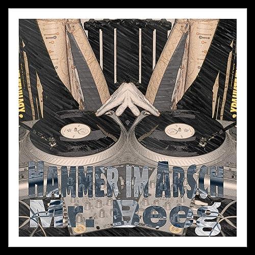 Amazon.com: Hammer Im Arsch [Explicit]: Mr. Beeg: MP3 Downloads