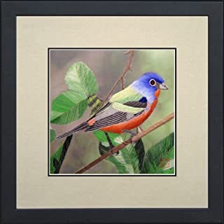 Best painted bunting art Reviews