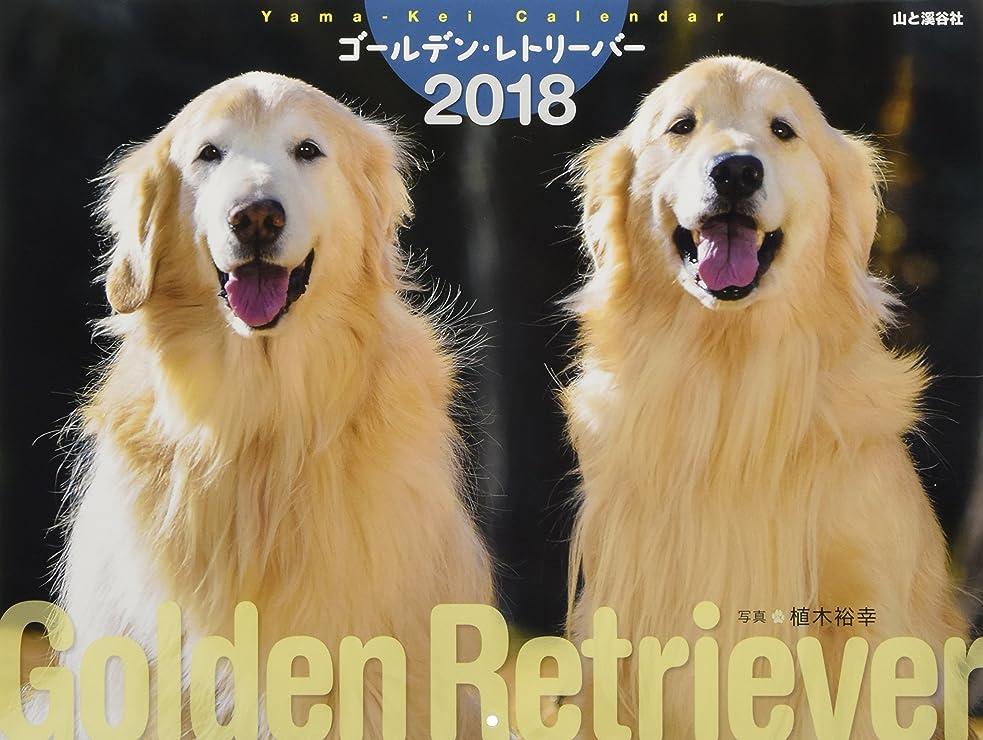 最小化するしてはいけません注入するカレンダー2018 ゴールデン?レトリーバー 今年もシアワセ~戌年だワン!双六付き (ヤマケイカレンダー2018)