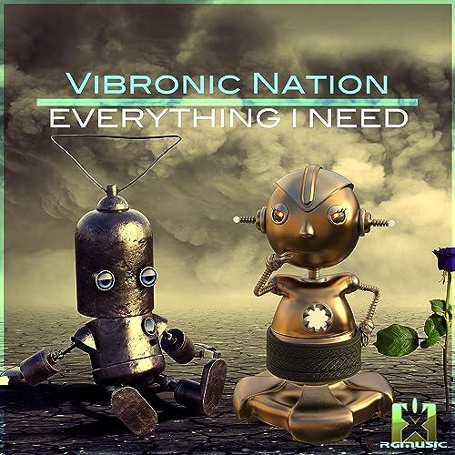 Vibronic Nation feat. Debbiah - Everything I Need