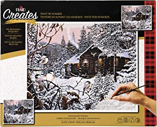 Plaid Creates Enchanted Woods Paint by Number Kit 16