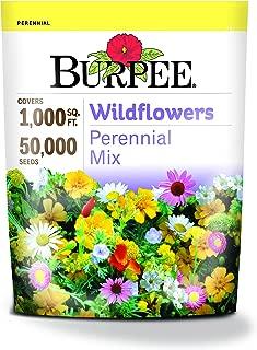 Burpee Wildflowers Perennial Mix   50,000 Seeds
