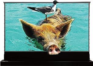 VIVIDSTORM S PRO超短焦点レーザープロジェクタースクリーン、TVホームシアタープロジェクター8K / 3D / UHDブラック ハウジングの電動フロアライジングスのクリーン110インチのアンビエントライトリジェクションスクリーン ...