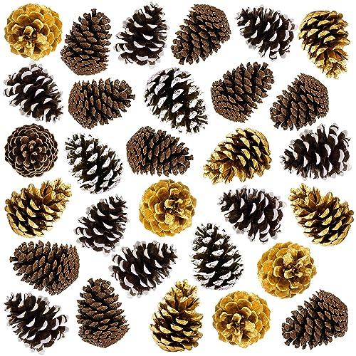 Pinecone Decorations Amazon Com